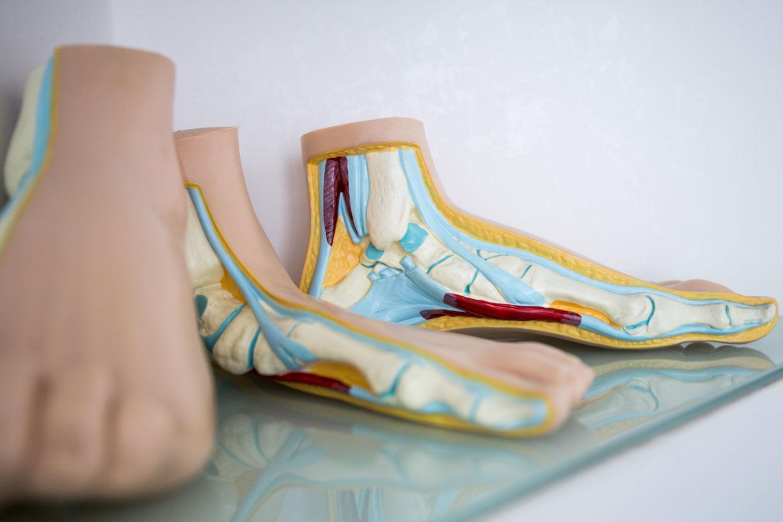 podologia parioli modelli piede